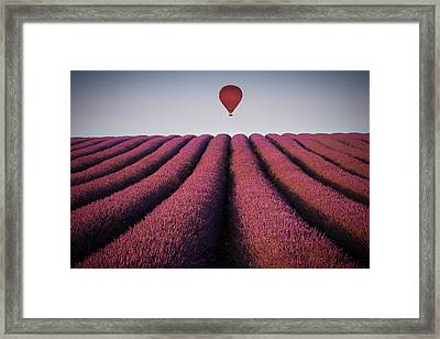 Flying High Framed Print by Paul Baggaley