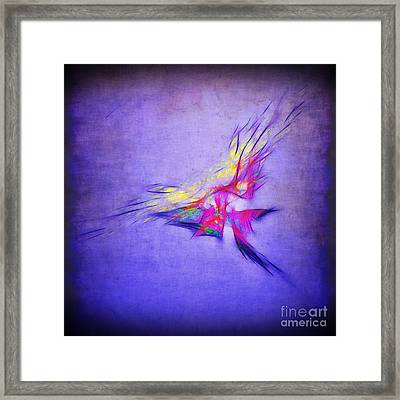 Flying Into The Sun Framed Print by Judi Bagwell