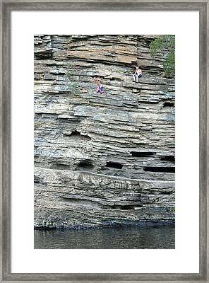 Flying Leap Framed Print by Teresa Blanton