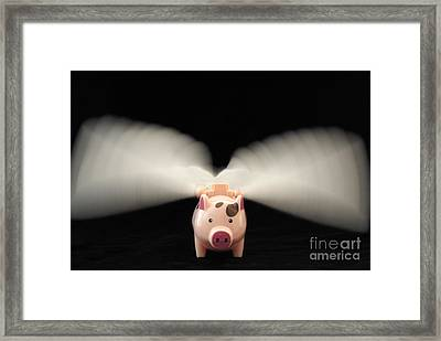 Flying Pig Toy With Wings Framed Print