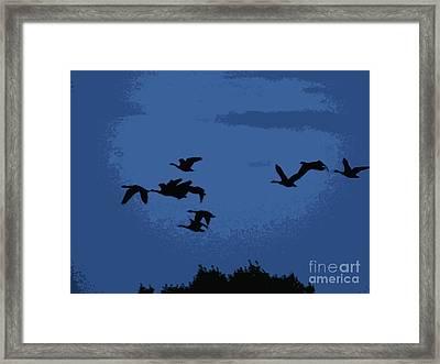 Flying South Framed Print by Trevor Fellows