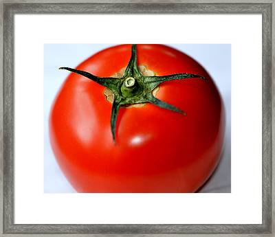 Framed Print featuring the photograph Flying Tomato by Tanya Tanski