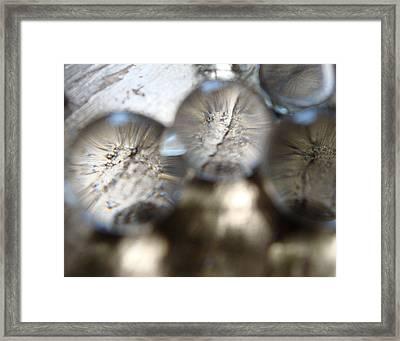 Focal Framed Print by Christian Allen
