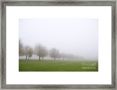 Fog Framed Print by Boris Suntsov