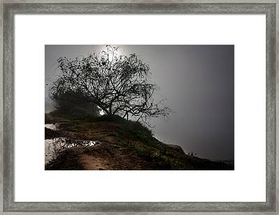 Framed Print featuring the photograph Fog Day by Edgar Laureano