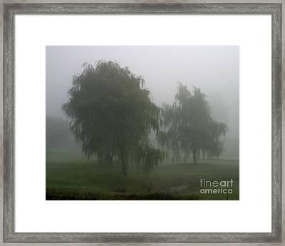 Fog II Framed Print