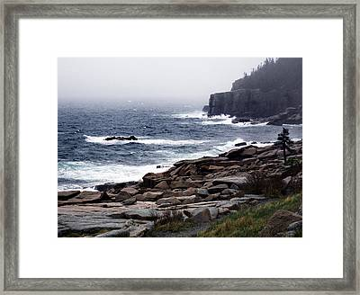 Fog In Acadia Framed Print by Skip Willits