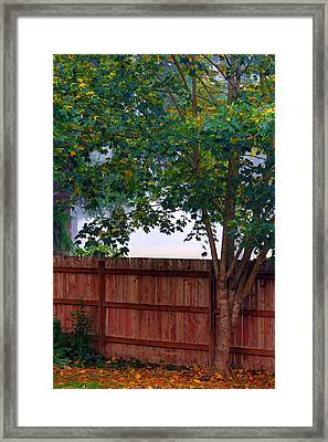 Framed Print featuring the photograph Fog In Olympia by Jeanette C Landstrom