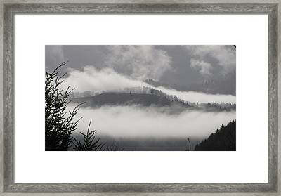Framed Print featuring the photograph FOG by Katie Wing Vigil