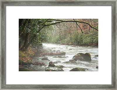 Fog On The River Framed Print