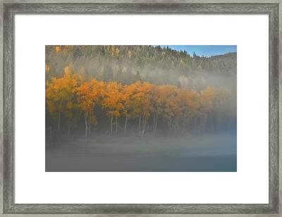Framed Print featuring the photograph Foggy Autumn Morning by Albert Seger