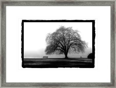 Foggy Day H-4 Framed Print by Mauro Celotti