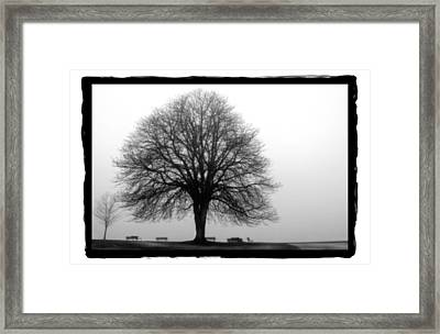 Foggy Day H-5 Framed Print by Mauro Celotti