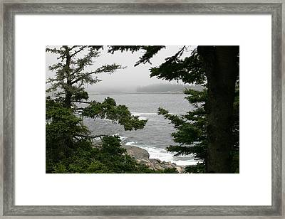 Foggy Day In Maine Framed Print by Jeanne Andrews