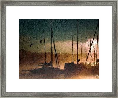 Foggy Evening Framed Print