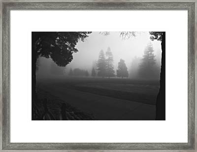 Foggy Fairway Framed Print
