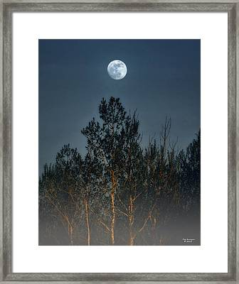 Foggy Forest With Full Moon Framed Print by Peg Runyan