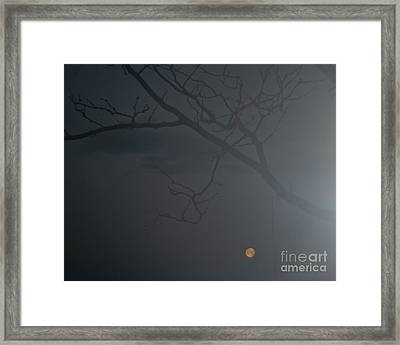 Foggy Morn In Fort Collins Framed Print by Harry Strharsky