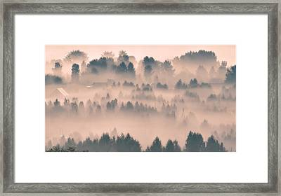 Foggy Morning 21 Framed Print