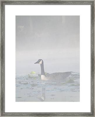 Framed Print featuring the photograph Foggy Morning Goose by Gerald Strine