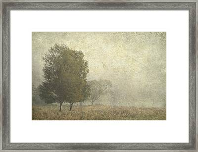 Foggy Morning. Trossachs National Park. Scotland Framed Print by Jenny Rainbow