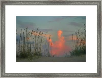 Foggy Oats Framed Print by Kristin Elmquist