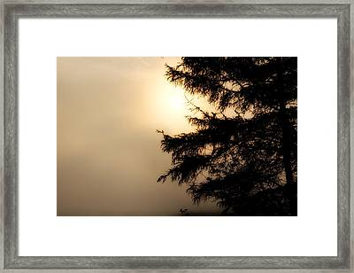 Foggy Start Framed Print by Gary Smith
