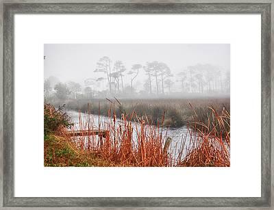 Foggy Waterville Marsh Framed Print
