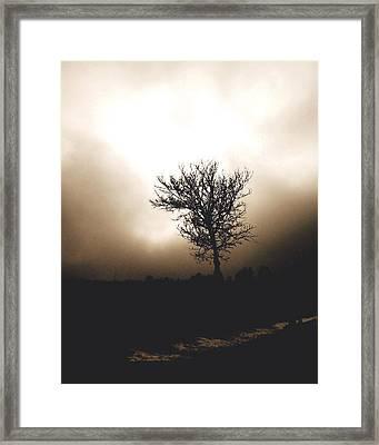 Foggy Winter Morning Framed Print by Ann Powell