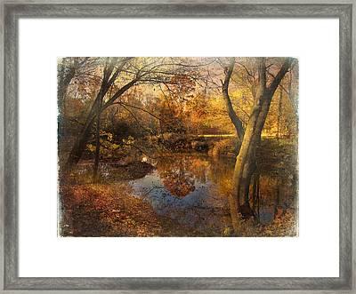 Foliage Canvas Framed Print by John Rivera
