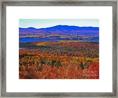 Foliage From Height Of Land Framed Print