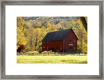 Foliage In Kent Connecticut Framed Print by Sabine Jacobs