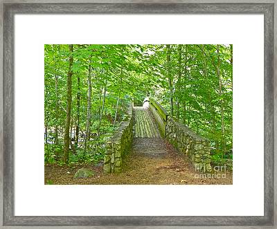 Framed Print featuring the photograph Follow Me by Eve Spring