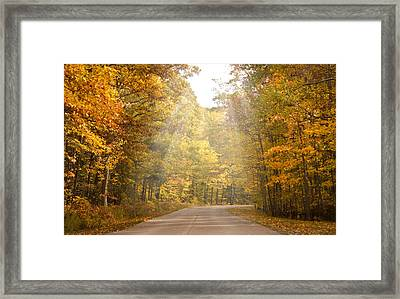 Follow The Light Framed Print by Cindy Haggerty