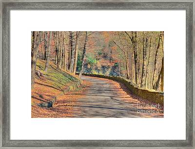 Follow The Path Framed Print by Kathleen Struckle
