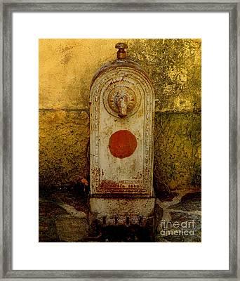 Fontaine D'eau Framed Print by Lainie Wrightson