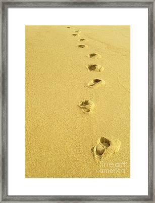 Foot Prints Framed Print by Carlos Caetano