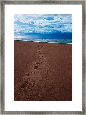 Foot Prints To The Sea Framed Print by Matt Dobson