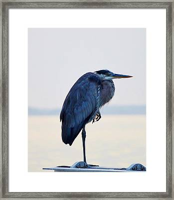Foot Rest Framed Print