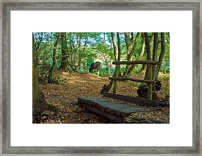 Framed Print featuring the photograph Footbridge To....... by Trevor Chriss