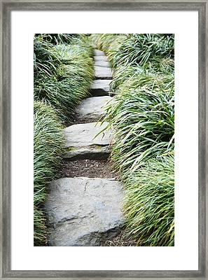 Footpath Through Zen Garden, Uk Framed Print