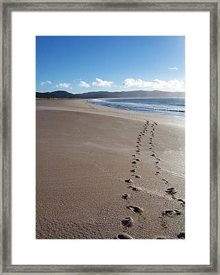 Framed Print featuring the photograph Footsteps In The Sand by Peter Mooyman