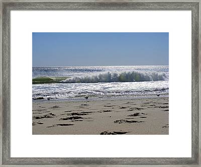 Footsteps To The Shore Framed Print