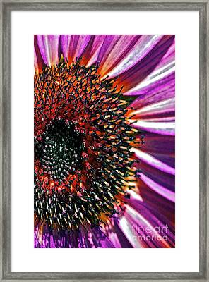 For Ana Framed Print