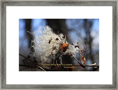 For Everything Framed Print by Rick Rauzi