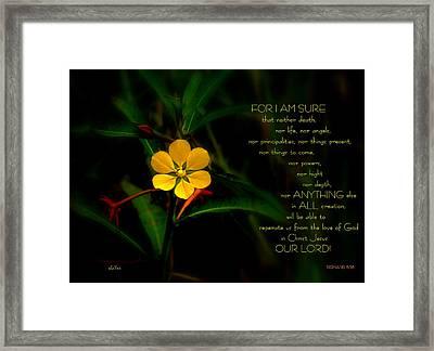 For I Am Sure Framed Print by Shayne Johnson Fleming