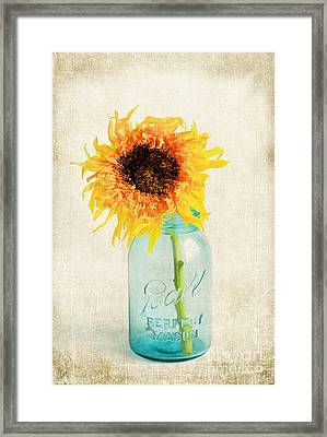 For My Friend Framed Print by Darren Fisher