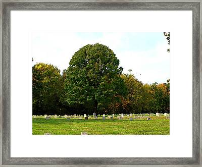 For Our Freedom Framed Print by Judy  Waller