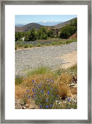 For Purple Mountain Majesties Framed Print by LeeAnn McLaneGoetz McLaneGoetzStudioLLCcom