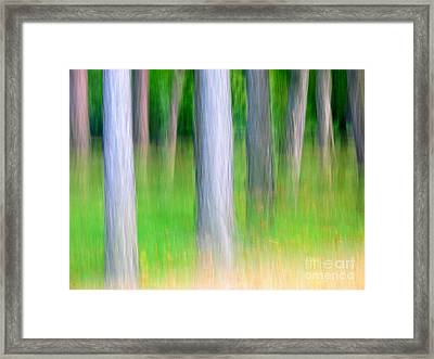 Forest Abstract Framed Print by Odon Czintos